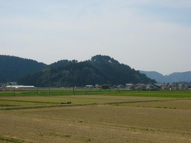 東郷(槙山)城跡