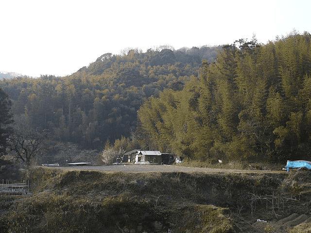 芥川山城跡がある三好山。細川晴元や三好長慶の居城として知られる。