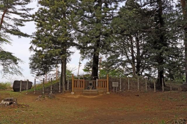武田勝頼が築き、甲州流築城術の集大成だといわれた城は?