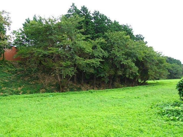 若林城の堀跡と土塁