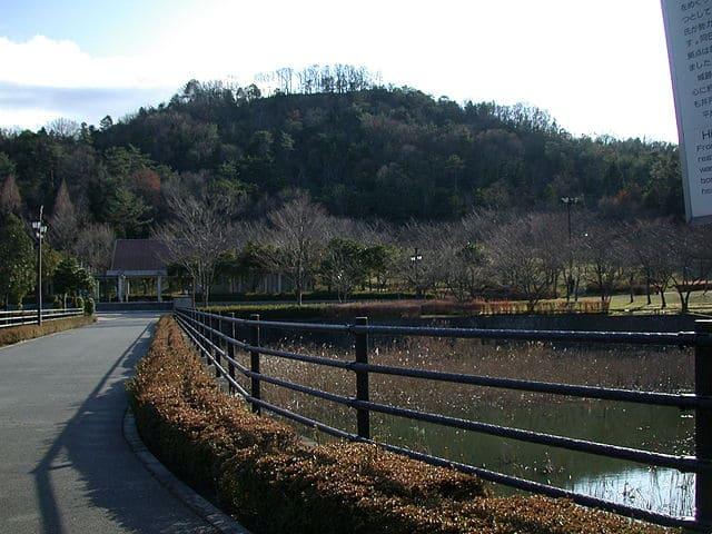 遠くから見た鏡山城跡