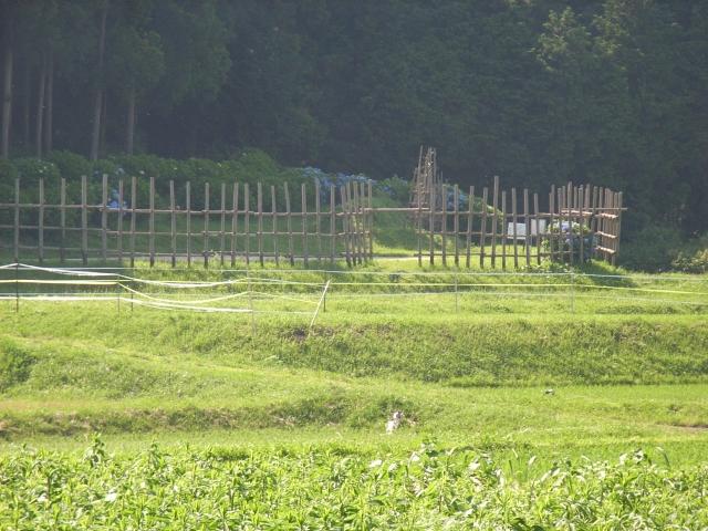 再現された馬防柵