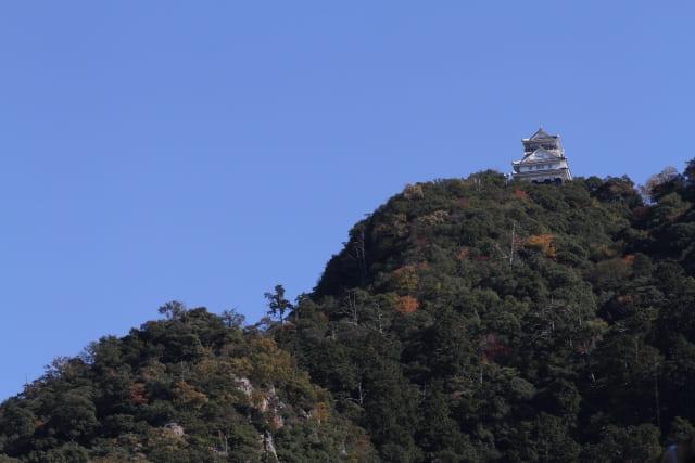 金華山(稲葉山)の頂上に立つ岐阜城(稲葉山城)