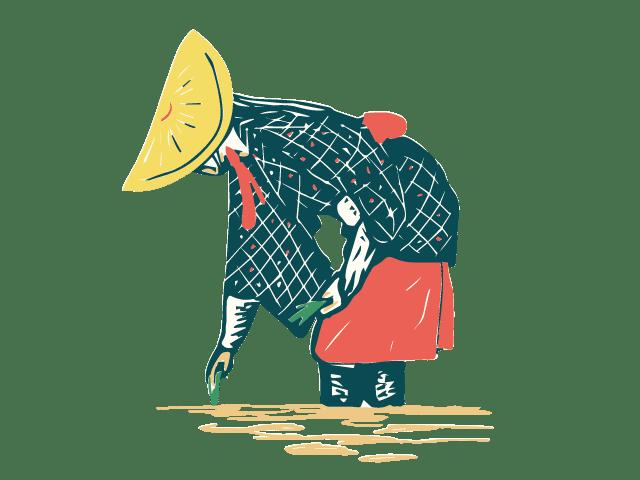 田植えする女性